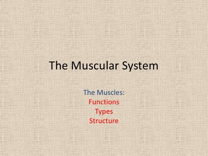 The Muscular System     The Muscles:      Functions         Types       Structure