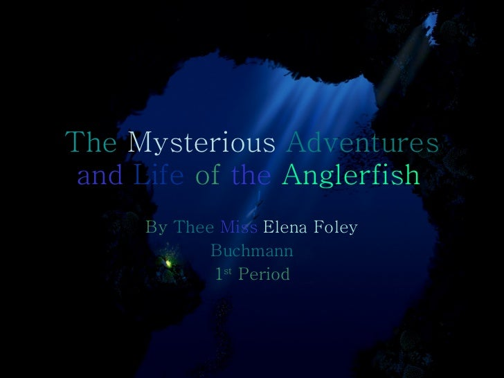 The  Mysterious  Adventures   and   Life   of   the   Anglerfish   By   Thee   Miss   Elena   Foley Buchmann 1 st  Period