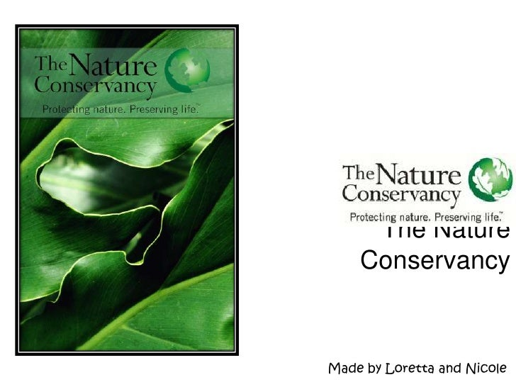 The Nature Conservancy<br />Made by Loretta and Nicole<br />