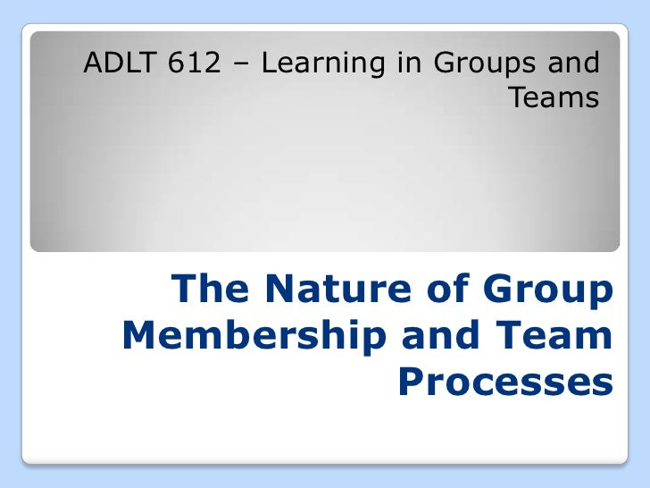 explain the nature of groups and group behaviour in an organisations Foundation of group behavior and understanding work team  regarding internal nature of groups dynamics of group formation  behaviour of organisations in their.