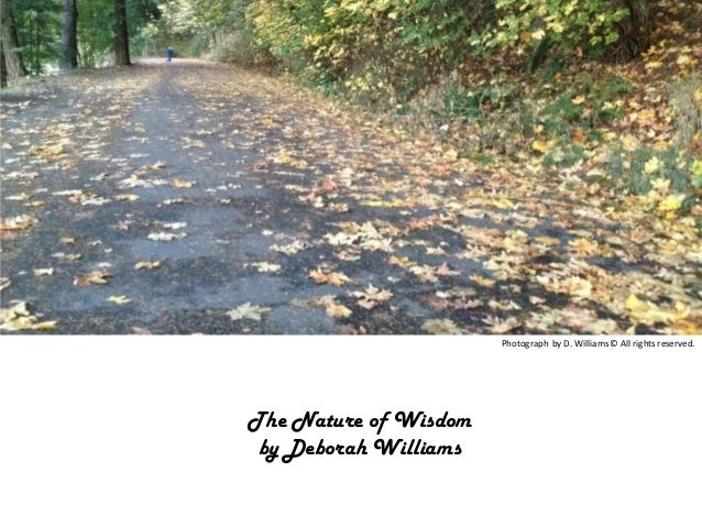 Photograph by D. Williams © All rights reserved.  The Nature of Wisdom by Deborah Williams