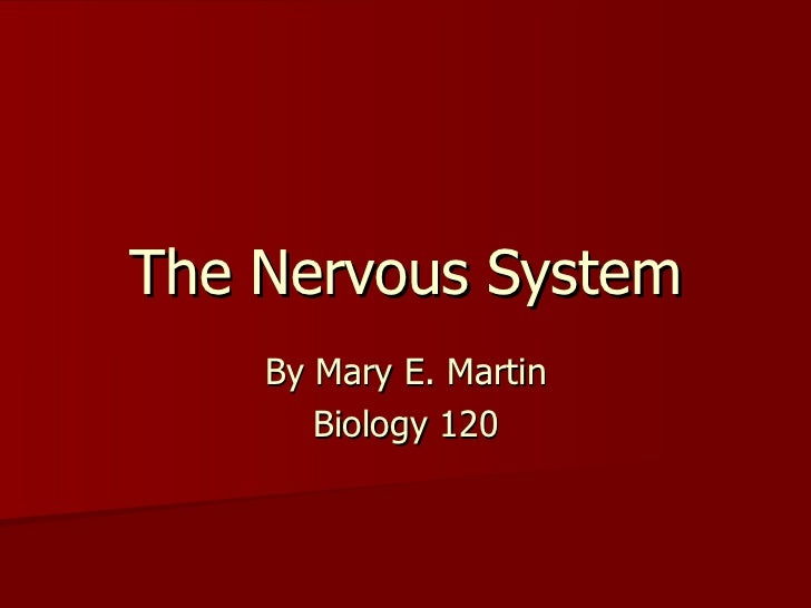 The Nervous System By Mary E. Martin Biology 120