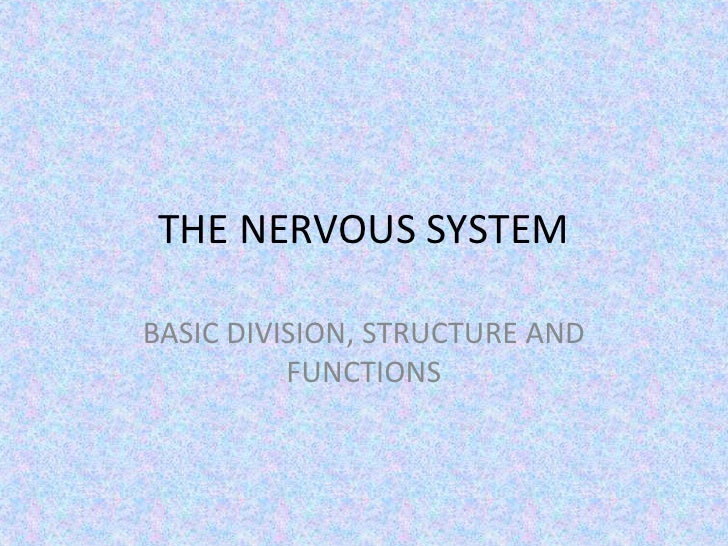 THE NERVOUS SYSTEMBASIC DIVISION, STRUCTURE AND          FUNCTIONS