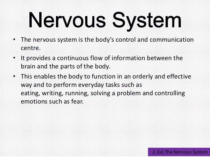 nervous system science report essay Buy ghostwriter lab report hypothesis for a science  free nervous system  the nervous system and the endocrine system they both work dinosaurs essay.