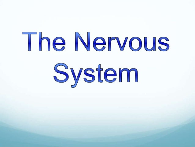 Key Questions  What are the different Nervous Systems?   What are the functions different Nervous Systems?  Can the Ner...