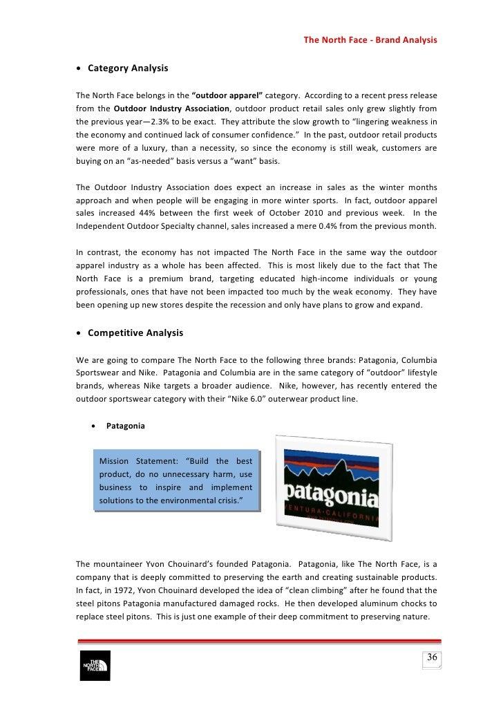 patagonia case analysis