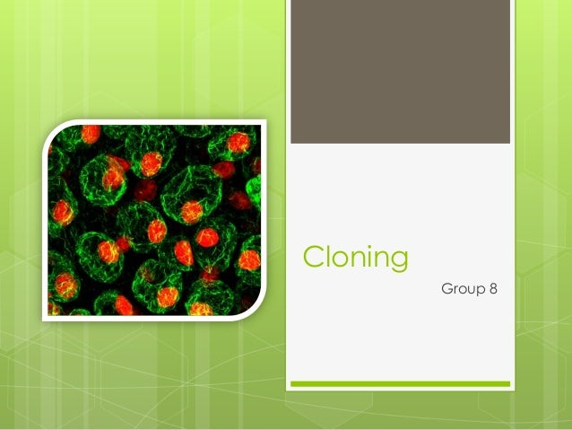 Cloning          Group 8