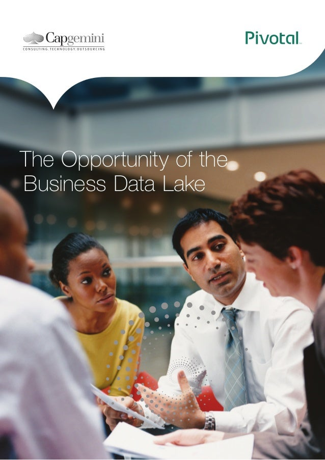 The Opportunity of the Business Data Lake