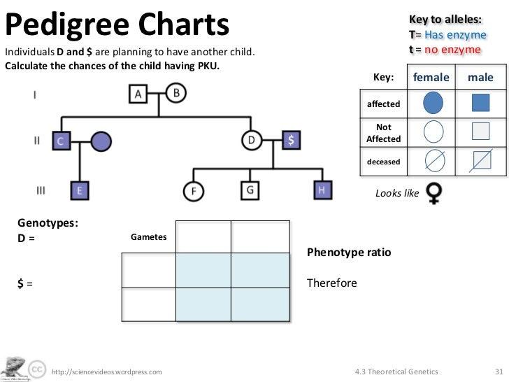 family pedigree charts