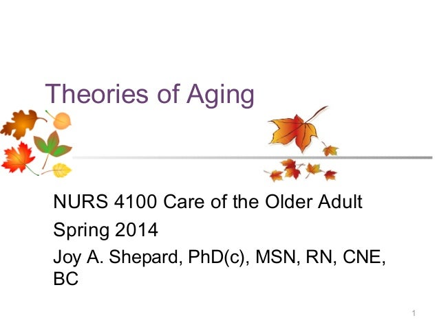 Theories of Aging  NURS 4100 Care of the Older Adult Spring 2014 Joy A. Shepard, PhD(c), MSN, RN, CNE, BC 1