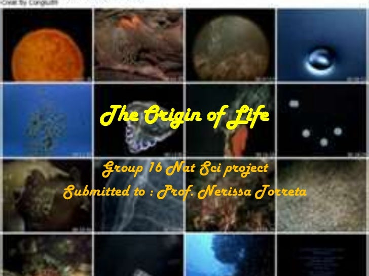 The Origin of Life    Group 16 Nat Sci projectSubmitted to : Prof. Nerissa Torreta