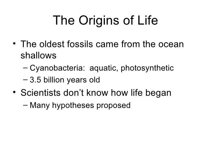 The Origins of Life <ul><li>The oldest fossils came from the ocean shallows </li></ul><ul><ul><li>Cyanobacteria:  aquatic,...