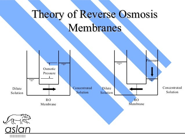 aslan Theory of Reverse OsmosisTheory of Reverse Osmosis MembranesMembranes  Dilute Solution Concentrated Solu...