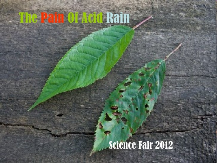 The pain of acid rain