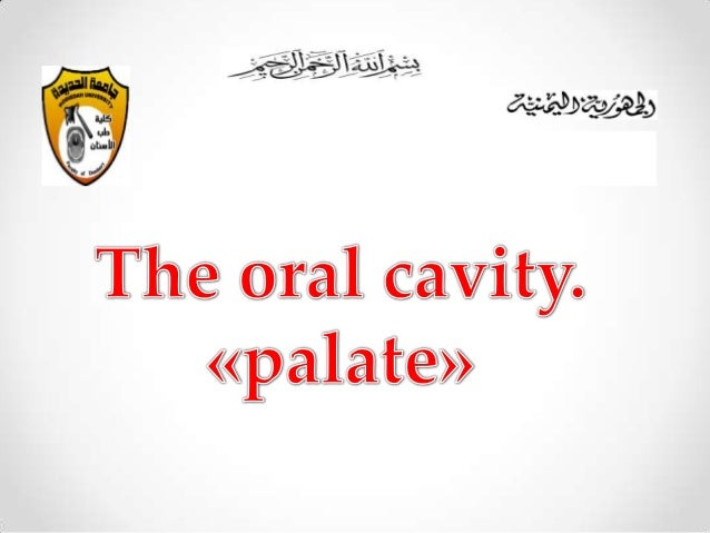 1)Introduction. 2)The hard palate . 3)The soft palate . 4)The muscle of the soft . 5)Nerve supply of the palate. 6)The Blo...