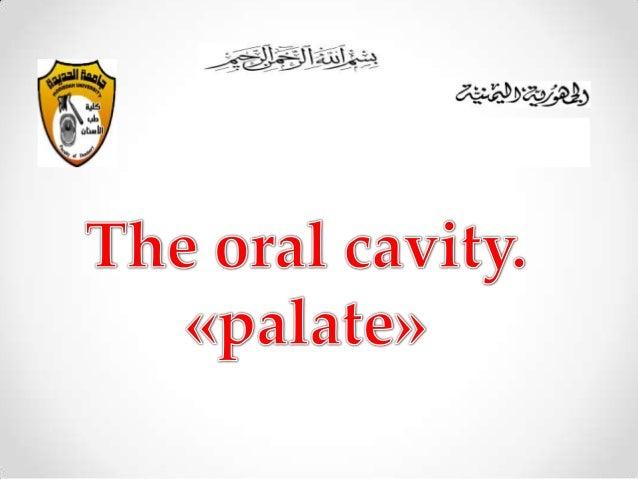 The palate       wala zaid