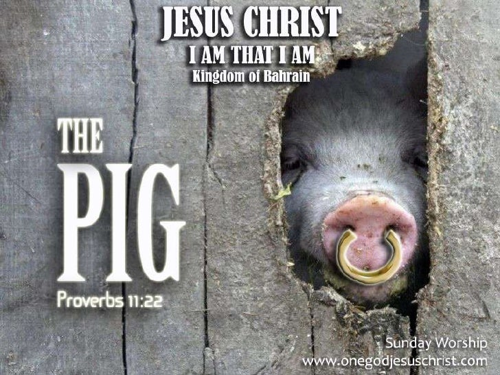 PROVERBS 11:22Kung paano anghiyas na ginto sanguso ngbaboy, gayon angmagandang babaena walang bait.