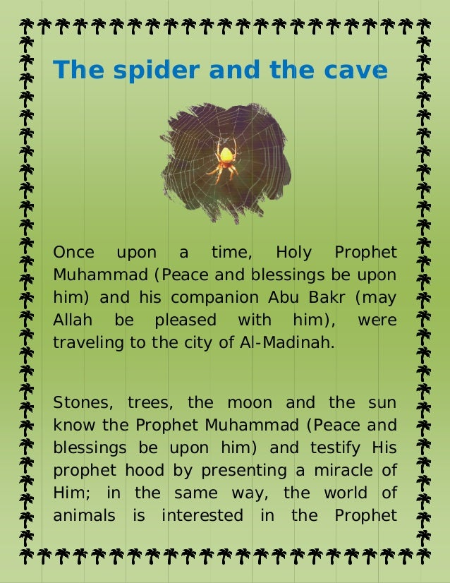 The pigeon and_spider_of_the_cave quran_learning_for_kids