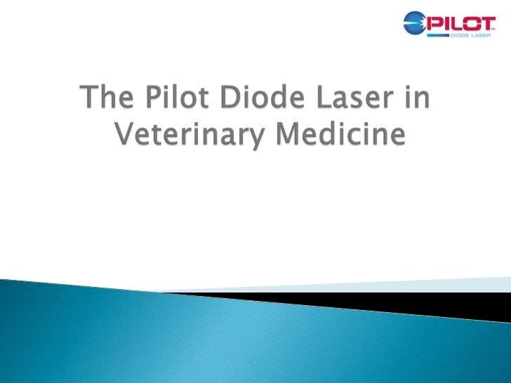 Pilot Laser in Veterinary Medicine - CAO Group
