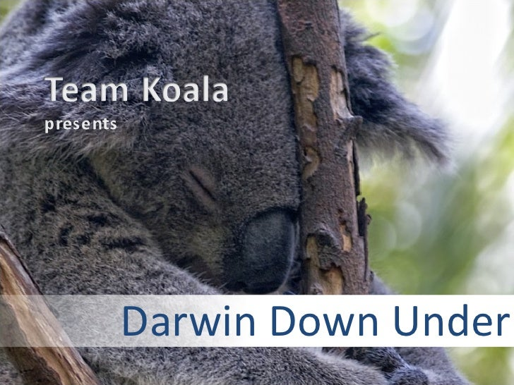 Darwin Down Under - a multimedia story
