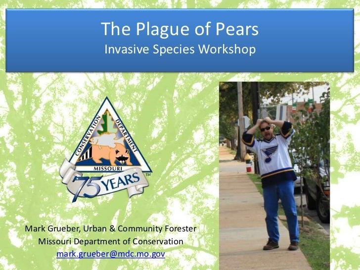 The Plague of Pears                  Invasive Species WorkshopMark Grueber, Urban & Community Forester  Missouri Departmen...
