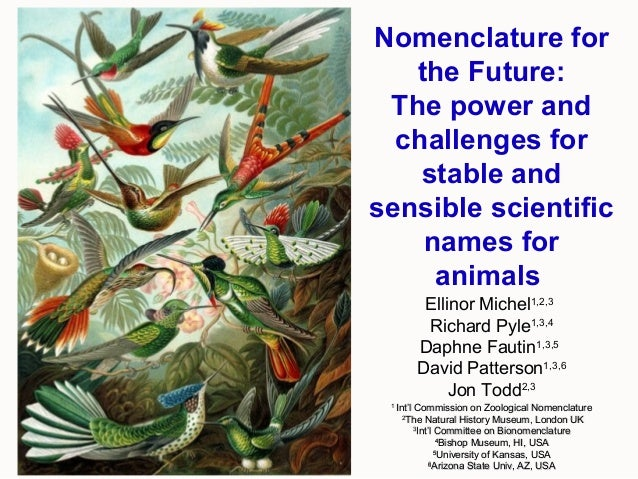 Nomenclature for the Future: The power and challenges for stable and sensible scientific names for animals Ellinor Michel1...