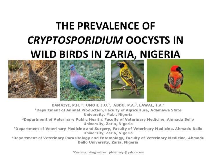 THE PREVALENCE OF       CRYPTOSPORIDIUM OOCYSTS IN        WILD BIRDS IN ZARIA, NIGERIA                   BAMAIYI, P.H.1*, ...