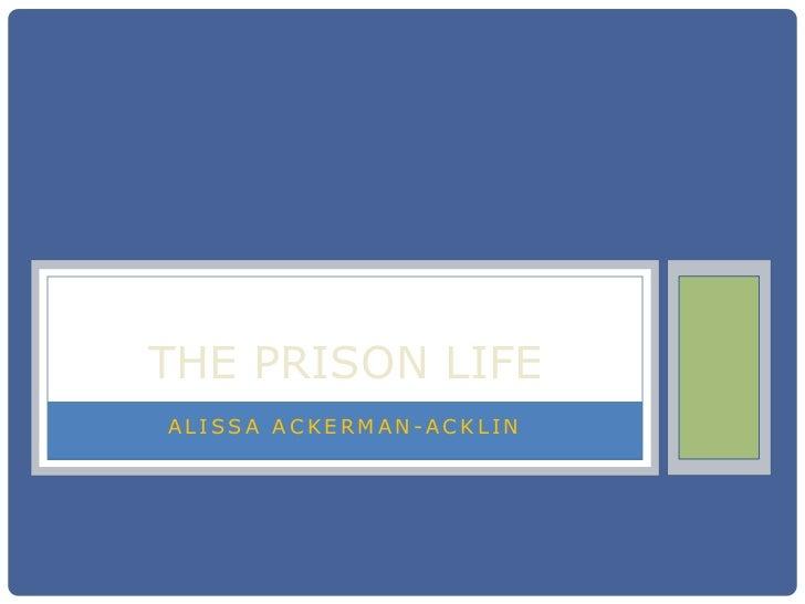 The prison life tcrim372 online version