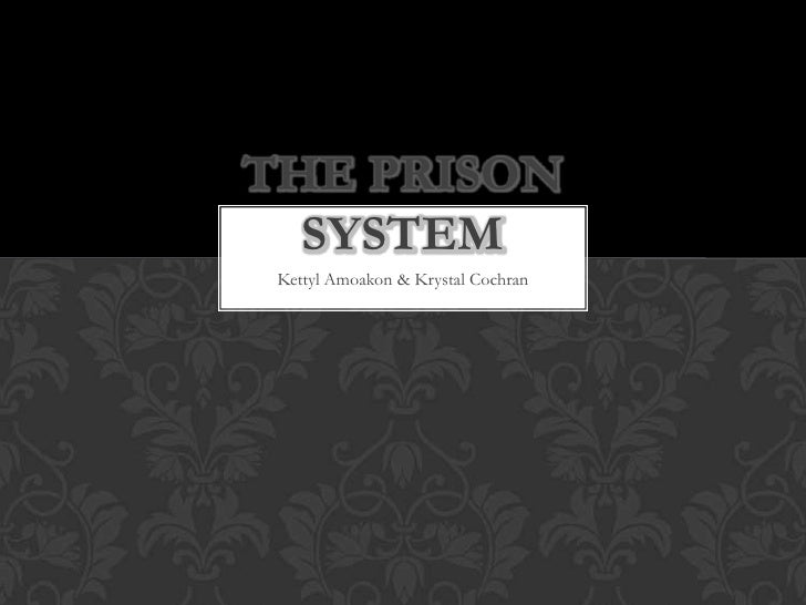 The Prison System