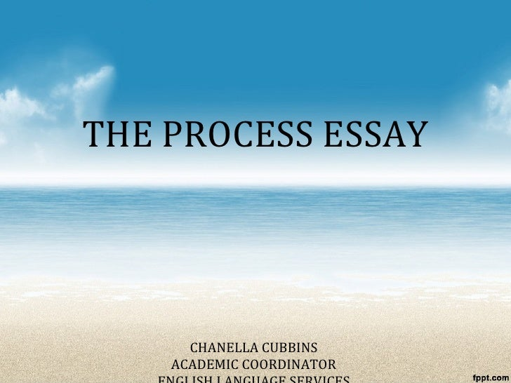 essay on academic honesty