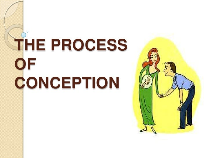 The process of conception