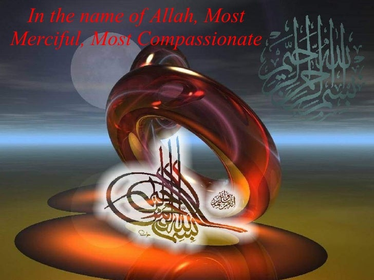 Mohammad (PBUH) have Many Wifes