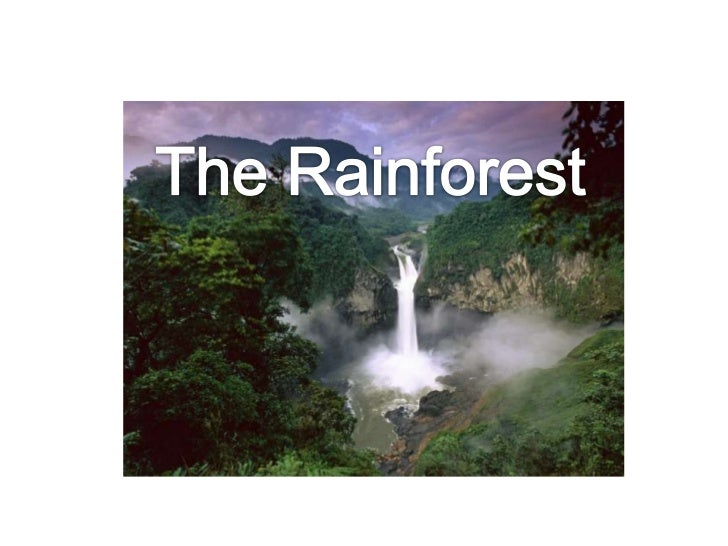 Postcard from the Amazon rainforest -                     BBChttp://www.bbc.co.uk/learningzone/clips/postcard-from-the-ama...