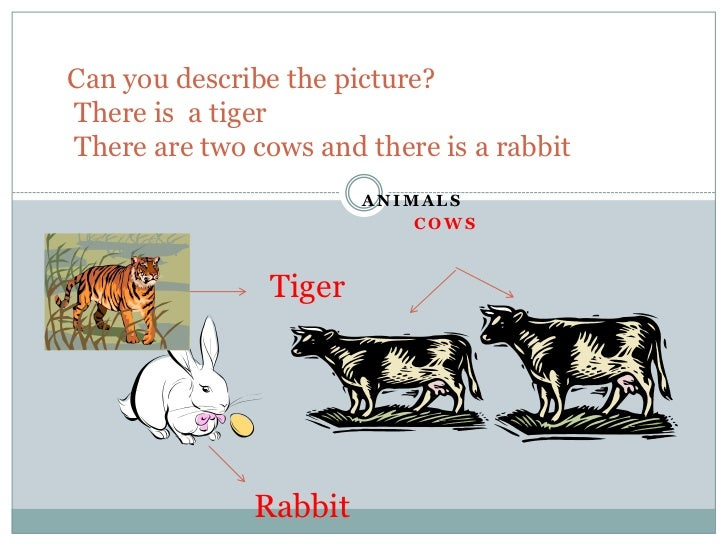 Can you describe thepicture?Thereis  a tigerThere are twocowsand thereis a rabbit<br />ANIMALS <br />Cows<br />Tiger<br />...