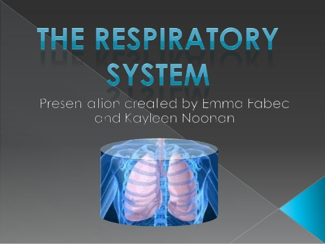 The respiratory system SSA+S