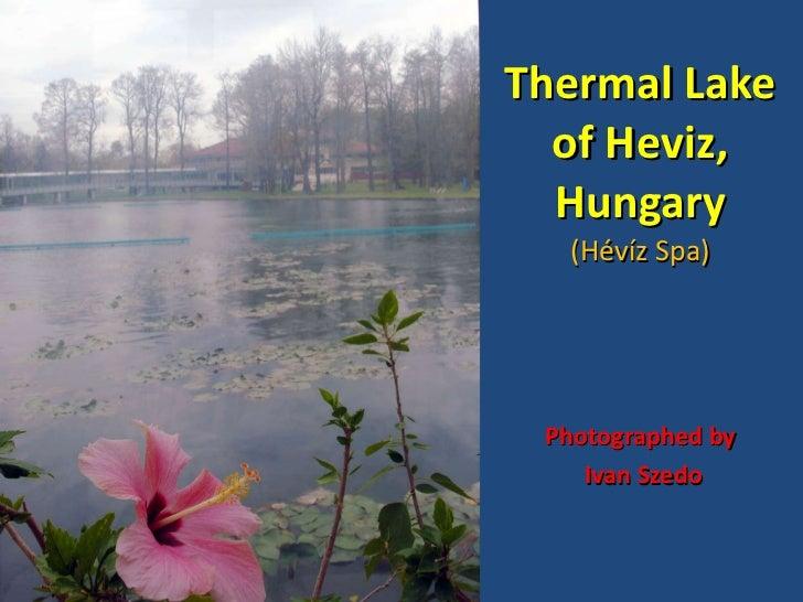 Thermal lake of Heviz, Hungary