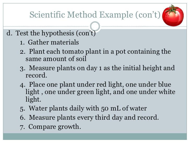 scientific methods essay Scientific methods and applications questions for your custom printable tests and worksheets in a hurry browse our pre-made printable worksheets library with a variety of activities and quizzes for all k-12 levels.