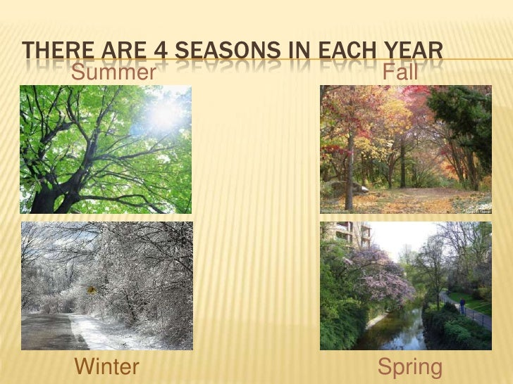 The 4 Seasons Of The Year the seasons of the year