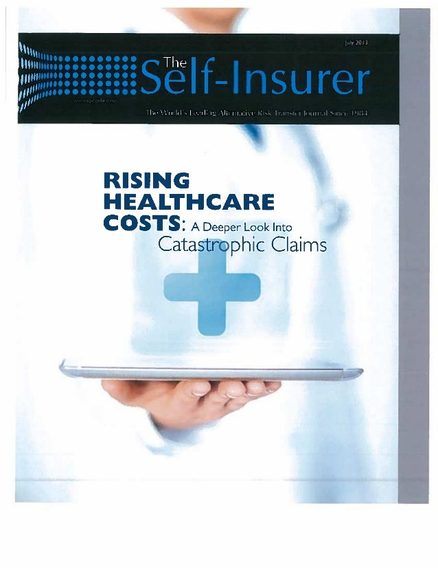 Internet expert system saves 54% on workers' comp cost-The Self Insurer