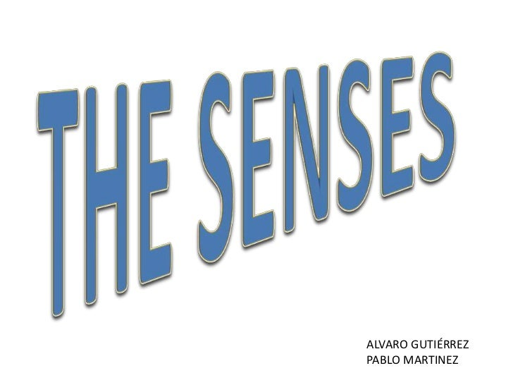 THE SENSES<br />ALVARO GUTIÉRREZ<br />PABLO MARTINEZ<br />