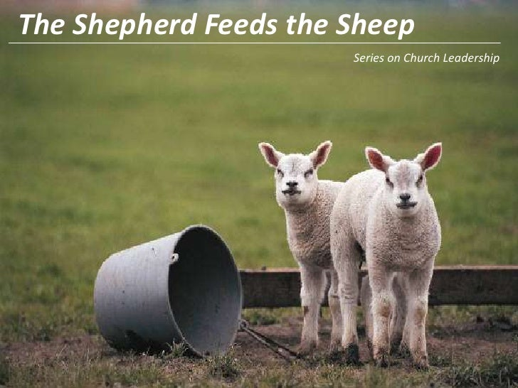 The Shepherd Feeds the Sheep<br />Series on Church Leadership<br />