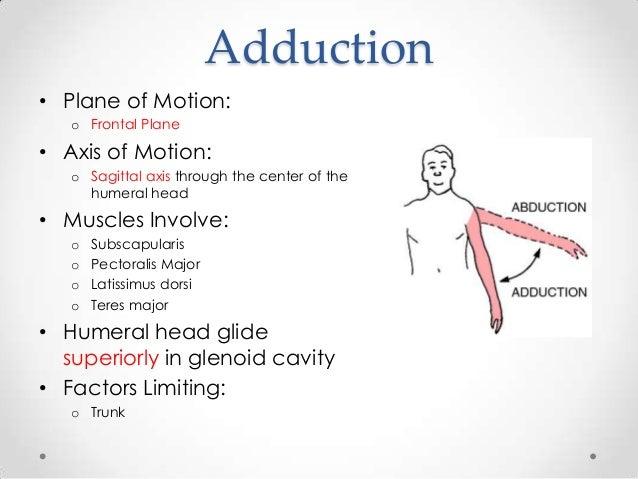 elbow range of motion exercises pdf