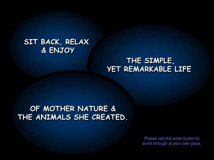 SIT BACK, RELAX <br />& ENJOY<br />THE SIMPLE,<br />YET REMARKABLE LIFE <br />OF MOTHER NATURE &<br />THE ANIMALS SHE CREA...