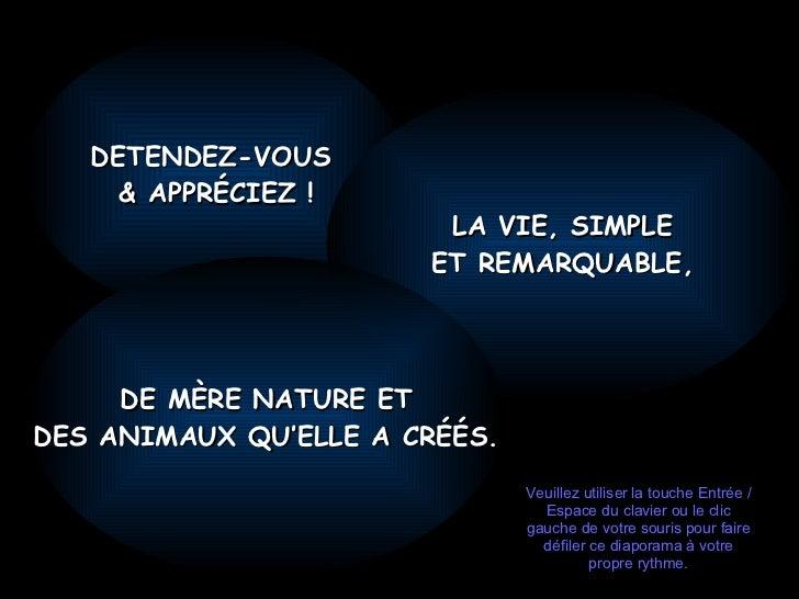 DETENDEZ-VOUS  & APPRÉCIEZ ! LA VIE, SIMPLE ET REMARQUABLE , DE MÈRE NATURE ET DES ANIMAUX QU'ELLE A CRÉÉS. Veuillez utili...