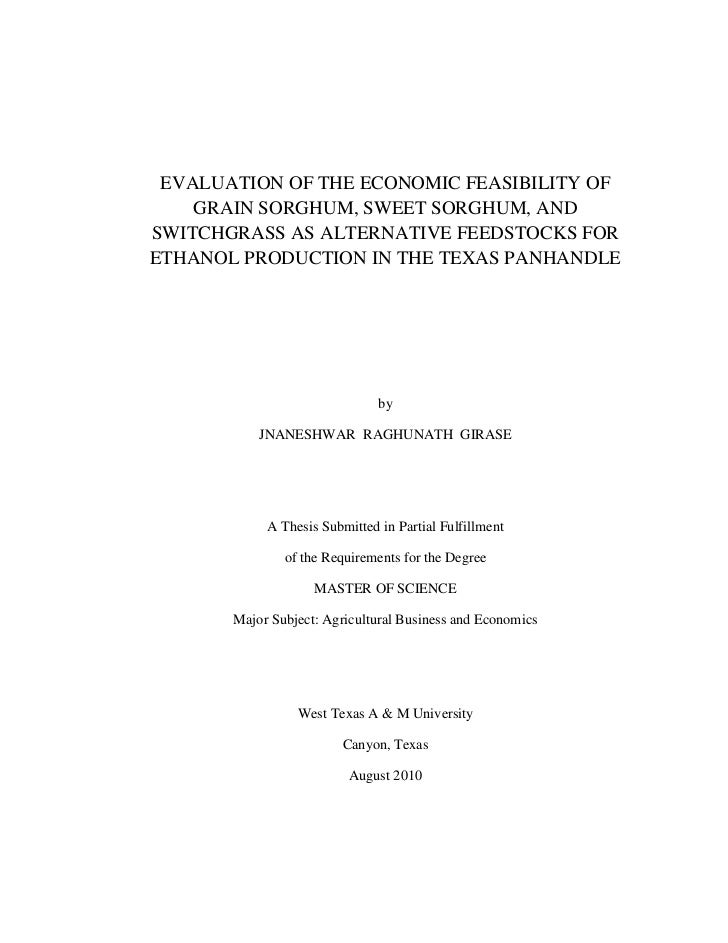 Economic Feasibility of Ethanol Production - Thesis (PDF)