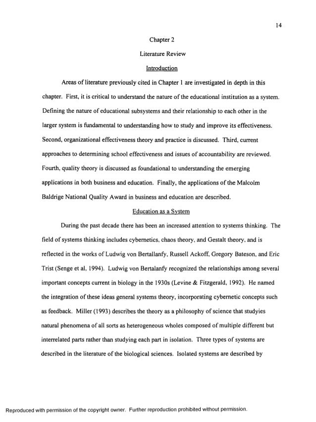 leadership dissertation literature review