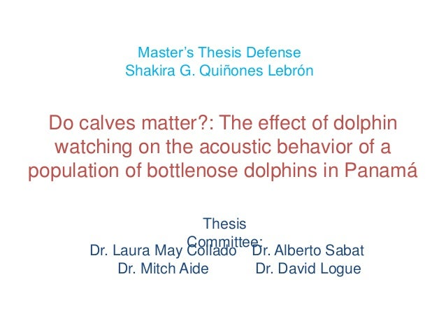 Master's Thesis Defense           Shakira G. Quiñones Lebrón  Do calves matter?: The effect of dolphin  watching on the ac...