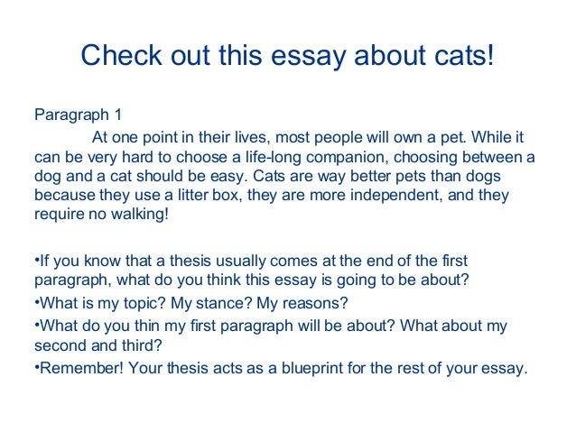 Essay revisor online