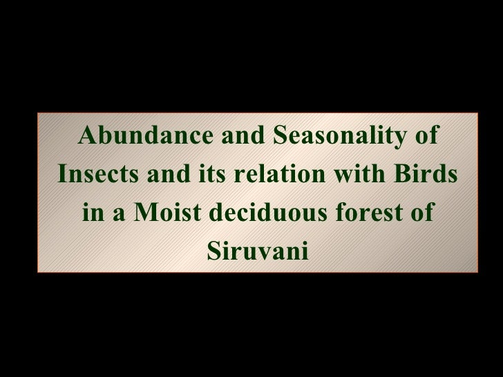 Abundance and Seasonality of Insects and its relation with Birds in a Moist deciduous forest of Siruvani
