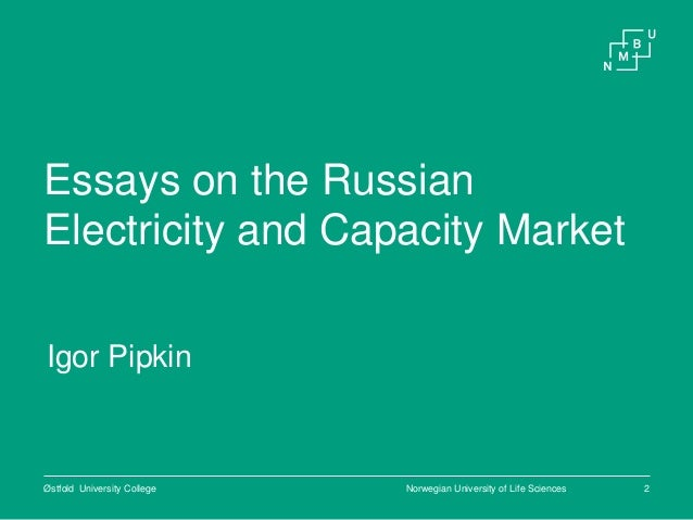 Essays on electricity